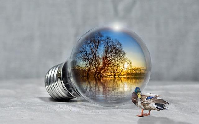 kachna u žárovky.jpg