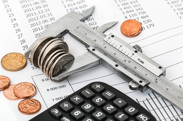 kontrola rozpočtu