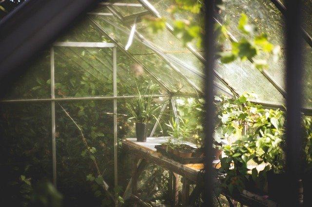 zahradní skleník.jpg