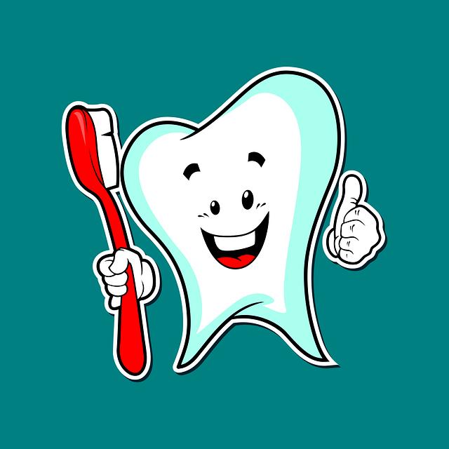 Znázornění zdravého zubu